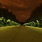 Madrit sky at Night by PMJCards