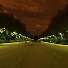 Madrit sky at Night by Pawel J