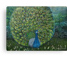 Peacock Garden Canvas Print