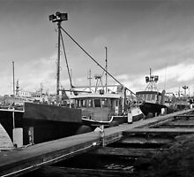 Fishing fleet at Portland - mono by Roger Neal