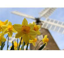 Windmill in Yellow Photographic Print