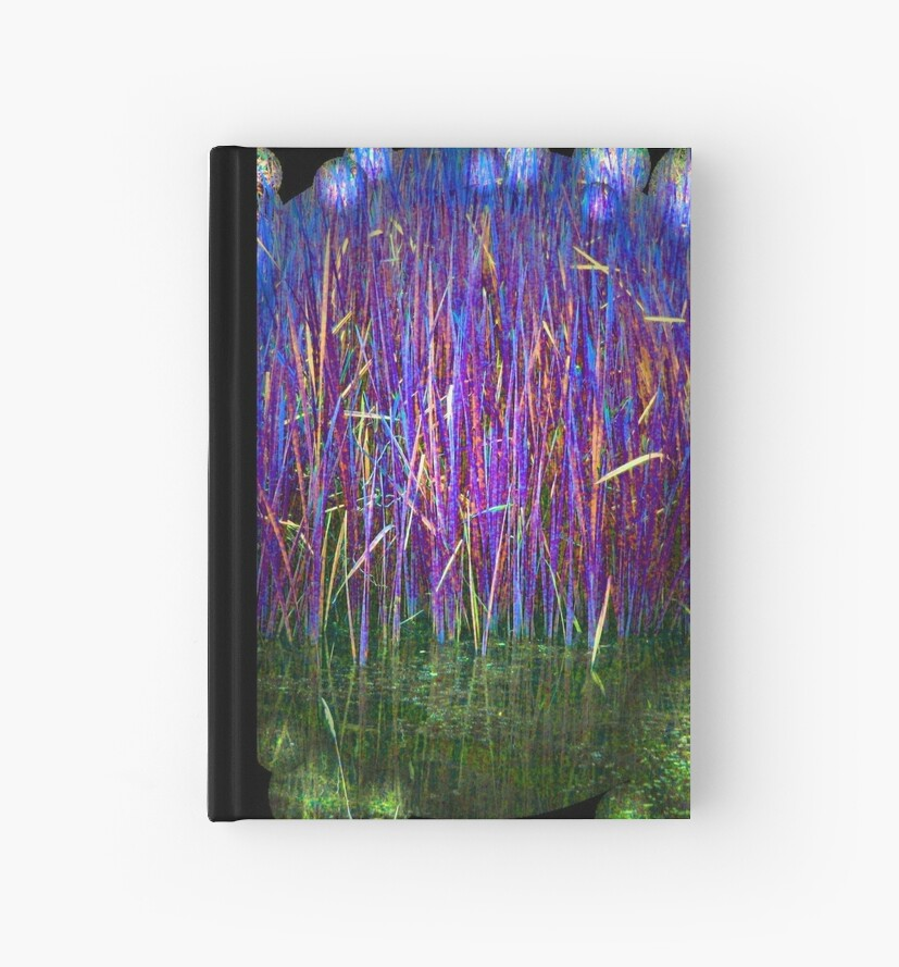 Many Coloured Reeds 2-Available As Art Prints-Mugs,Cases,Duvets,T Shirts,Stickers,etc by Robert Burns