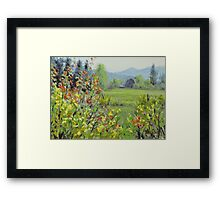Yellow Broom Spring Framed Print