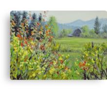Yellow Broom Spring Canvas Print