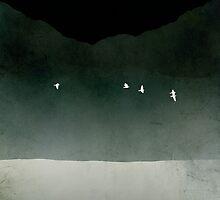 Night Flight by evesand
