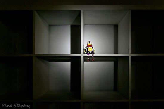 Empty Boxes by Pene Stevens