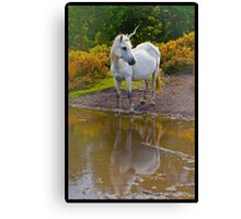 Mystic Unicorn in New Forest Canvas Print