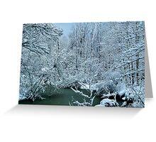 Southern Illinois Winter Scene 2_Dec 2012 Greeting Card