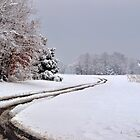 Southern Illinois Winter Scene 6_ Dec 2012 by michaelasamples