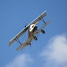 Soaring Biplane by rickstar228