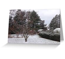 Winter Calm after the storm. Greeting Card