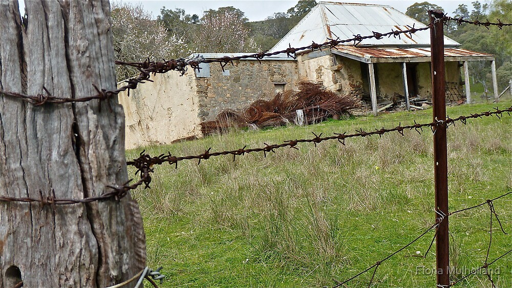 Old House - Barossa Valley, South Australia. by Fiona Mulholland