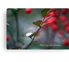 Berry Merry Christmas Canvas Print