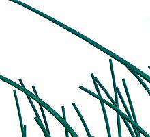 Green Blades by Matt Hill