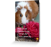 Guinea Pig Valentine Greeting Card