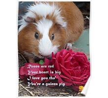 Guinea Pig Valentine Poster