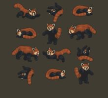 Red Pandas by TheRandomFactor