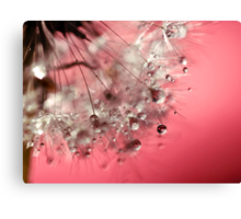 New Year's Pink Champagne - Happy New Year! Canvas Print