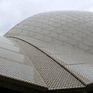 In Full Flight: Sydney Opera House, Australia by linfranca