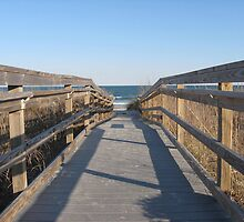Boardwalk by Tim Miklos
