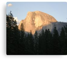 Copper Tone Half Dome Canvas Print