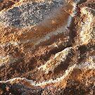 Weather Works #2: Cape Le Grande National Park, Western Australia by linfranca