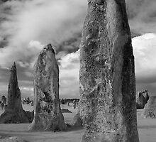 The Pinnacles - Western Australia by James Farnan