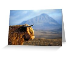 Highland Cow with Ben Hope - Highlands of Scotland Greeting Card
