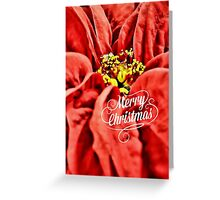 Merrry Merry! Greeting Card