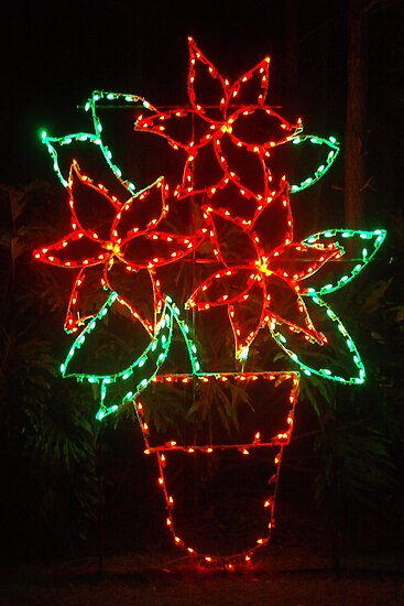 Poinsettia in lights by ♥⊱ B. Randi Bailey