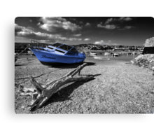 Fortuna and Driftwood  Canvas Print