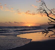 kingscliff beach sunrise ... by gail woodbury