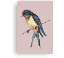 Bird 6 Canvas Print