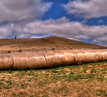 A Bale Of a Good Time - Along a Country Road , Victoria (40 Exposure HDR Panorama - The HDR Experience by Philip Johnson
