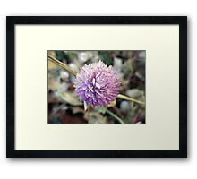 Energized Framed Print