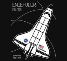 Space Shuttle Endeavour by Samuel Sheats