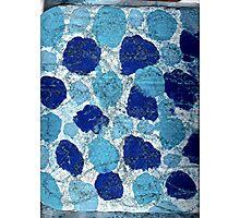 BLUE SUGAR COOKIES Photographic Print