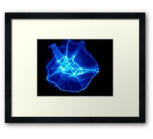 ©NLE Vortex II Framed Print