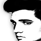 Elvis by rapidapple