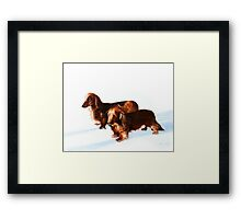 Doc and Chili Framed Print