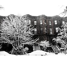 Brooklyn Winter Photographic Print