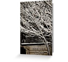 Park View  Greeting Card