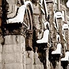 Snowy Facade  by AbeCPhotography
