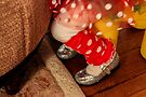 Silver Slippers by Nevermind the Camera Photography