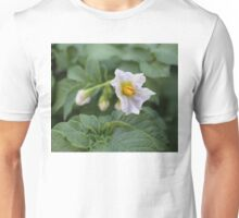 The First Potato Flower of May Unisex T-Shirt