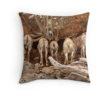 Salt Lick Cafe Throw Pillow