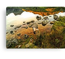 It's A Topsy-Turvy World - (unusual view of Dove Lake) Canvas Print
