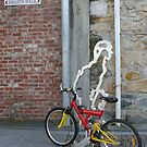 Commuter Confusion: Hobart, Tasmania, Australia by linfranca