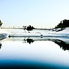 Abandoned Pool by SunriseBirds