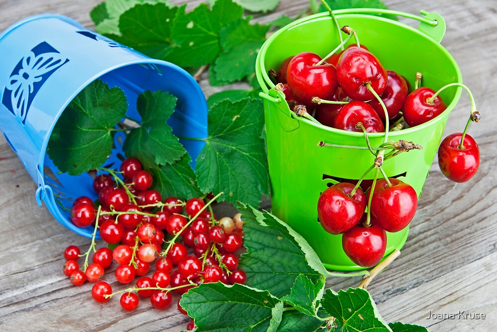 Cherries and currants by Joana Kruse
